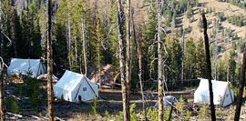 h_tents