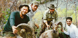 middlefork lodge outfitters sheep hunt left